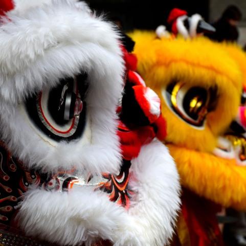 Hong Kong for Chinese New Year